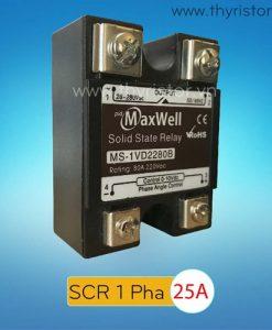 SCR 1 Pha 25A