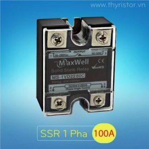 SSR 1 Pha 100A